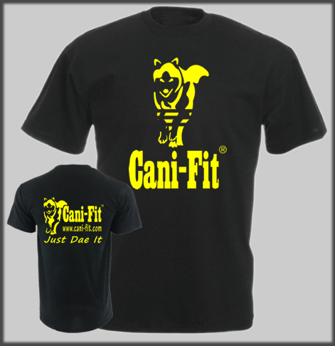 Cani Fit Split Line T Normal Print